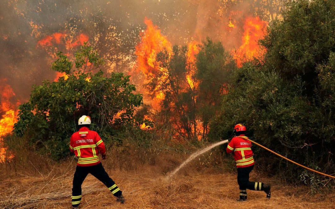Farlige skogbranner som aldri tar slutt
